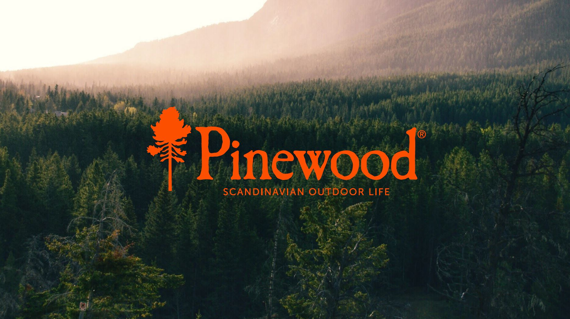 Pinewood Skogen 2018