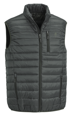 Vest Pinewood Cumbria Light